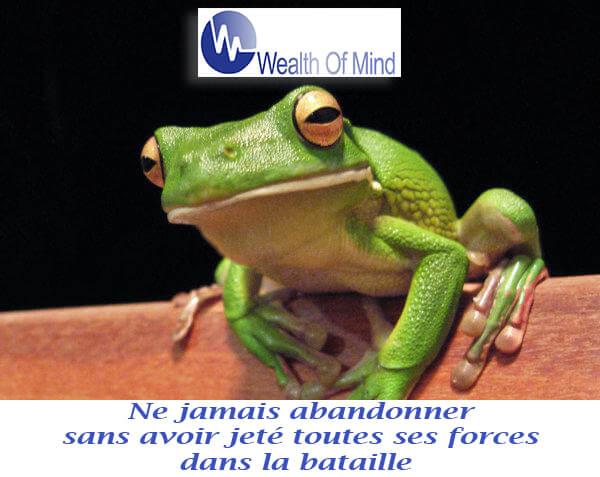 Histoire de grenouilles