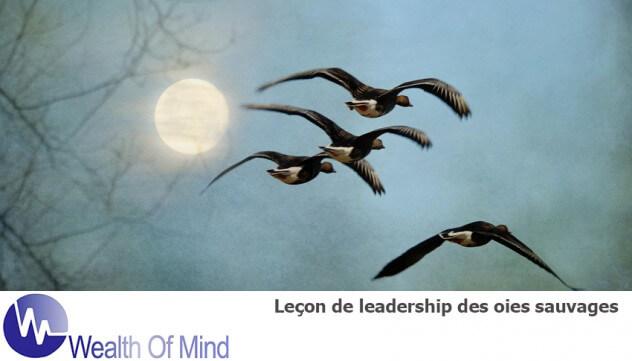 Geese leadership